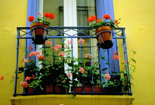 practical balcony ideas colorful pot yellow wall compact