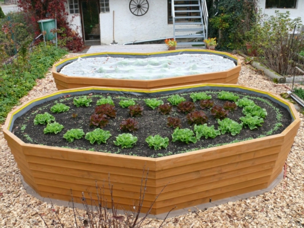 stima raised bed model cor